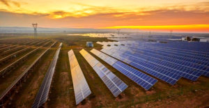 Texas Solar Field